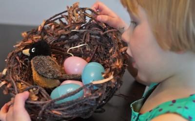 Nest-Craft
