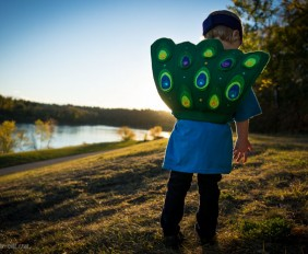 Children's Peacock Costume