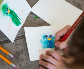 Bird Feather Cards