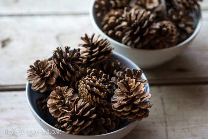 Collect Pinecones for Winter Crafts from make-it-your-own.com