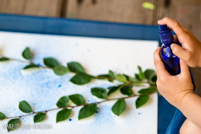 Spray Painting with make-it-your-own.com (Crafts & activities for kids!)