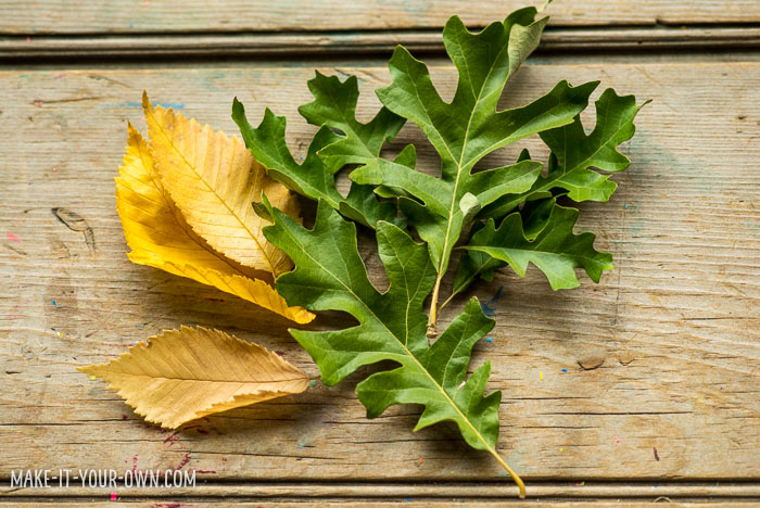 Clay Leaf Centrepiece with make-it-your-own.com (Crafts & activities for kids)