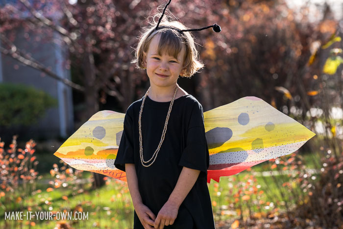 Paper Bag Butterfly Costume from make-it-your-own.com (Crafts & activities for kids!)
