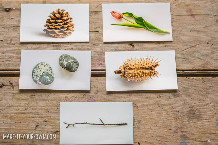 Drawing from Photos:  Nature Supplies with make-it-your-own.com (Creative activities for kids).  This activity encourages children to get out into nature, take photos and then draw from those photos.  This lends to creating diagrams, labels and descriptions, based on one's findings.