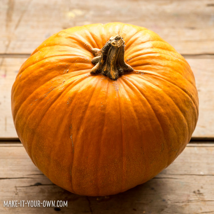 No carve fish bowl pumpkin idea for your Halloween jack-o-lantern!